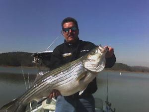 Lake Allatoona Fishing Guide First Bite Guide Service Contact Us