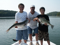 Hybrid and Striper Fishing Guides
