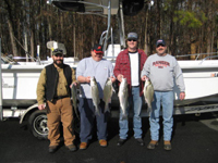 Lake Allatoona Hybrid and Striper Fishing