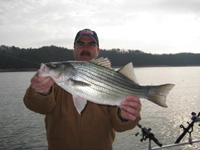 Allatoona Fishing Guides