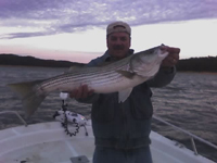 Allatoona Lake Striper Fishing Guide